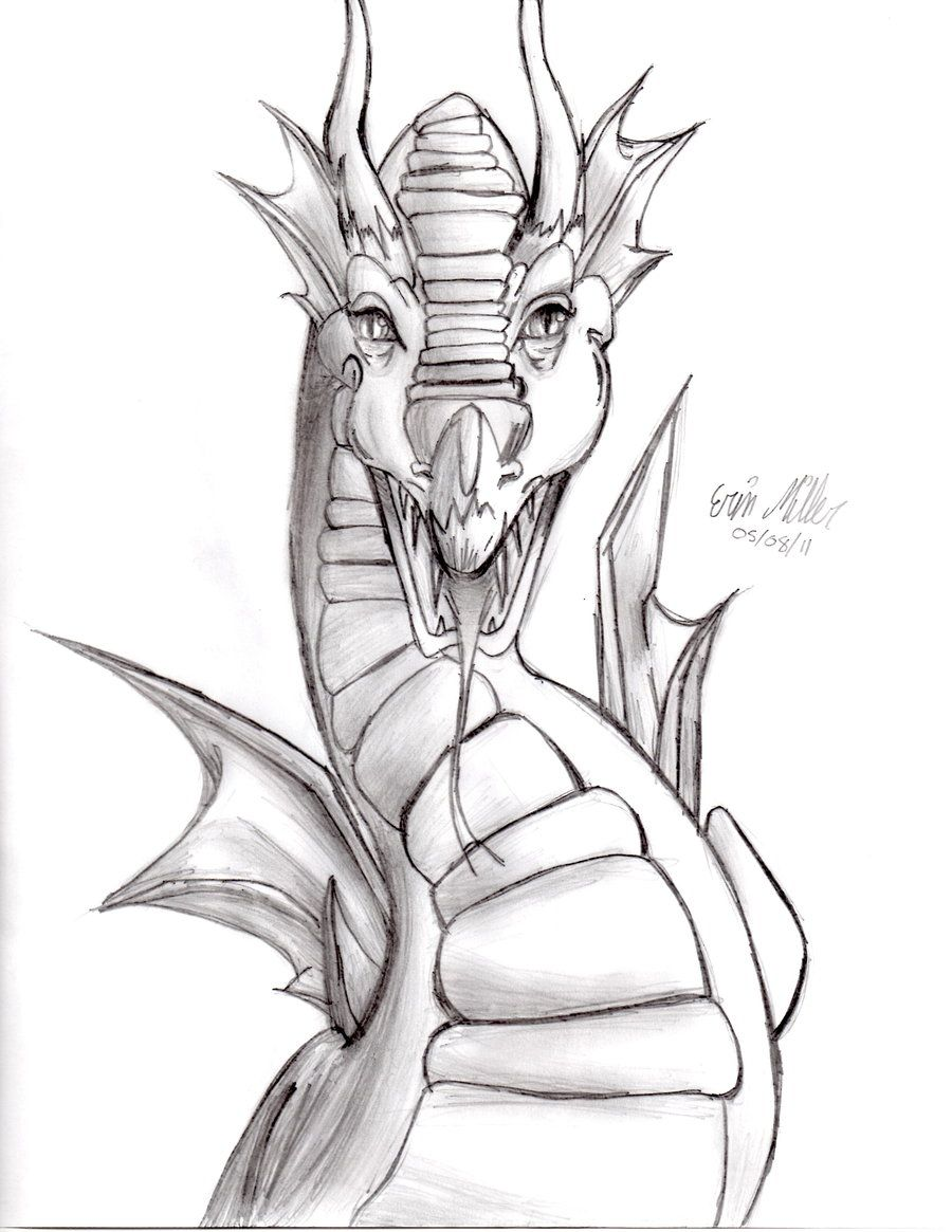Front Dragon Head Drawing : front, dragon, drawing, Images, Chinese, Dragon, Front, Dragon,, Head,, Drawing