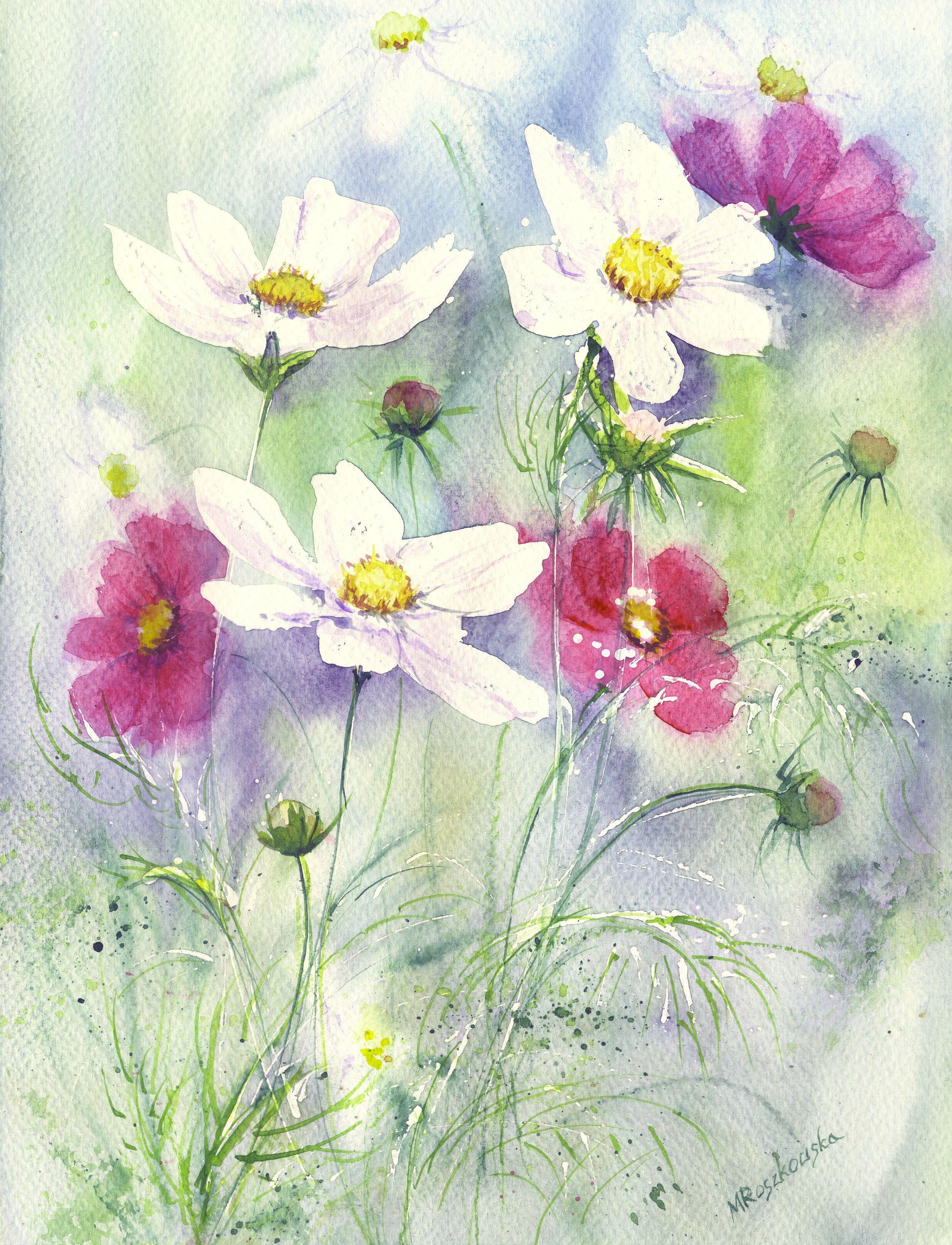 цветы ромашки картинки акварель работа очень