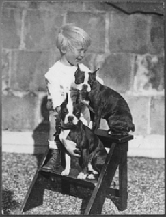 Gerald R. Ford,   38th President of the United States,  with Boston Terriers, Fleck and Spot