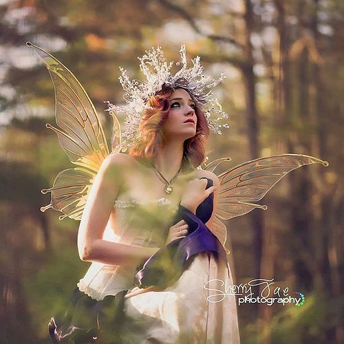 (via Pin by Lori Thompson on Fairy Fashion | Pinterest) Such  a gorgeous magical fairy from @sherryfreyphotography ! She is wearing  the Flora wings in diamond fire clear with bronze / copper veins. ©  Sherryfaephotography.com, all rights reserved. Please keep author and  caption if reposting, thanks!                           by Violaine Villota on Flickr