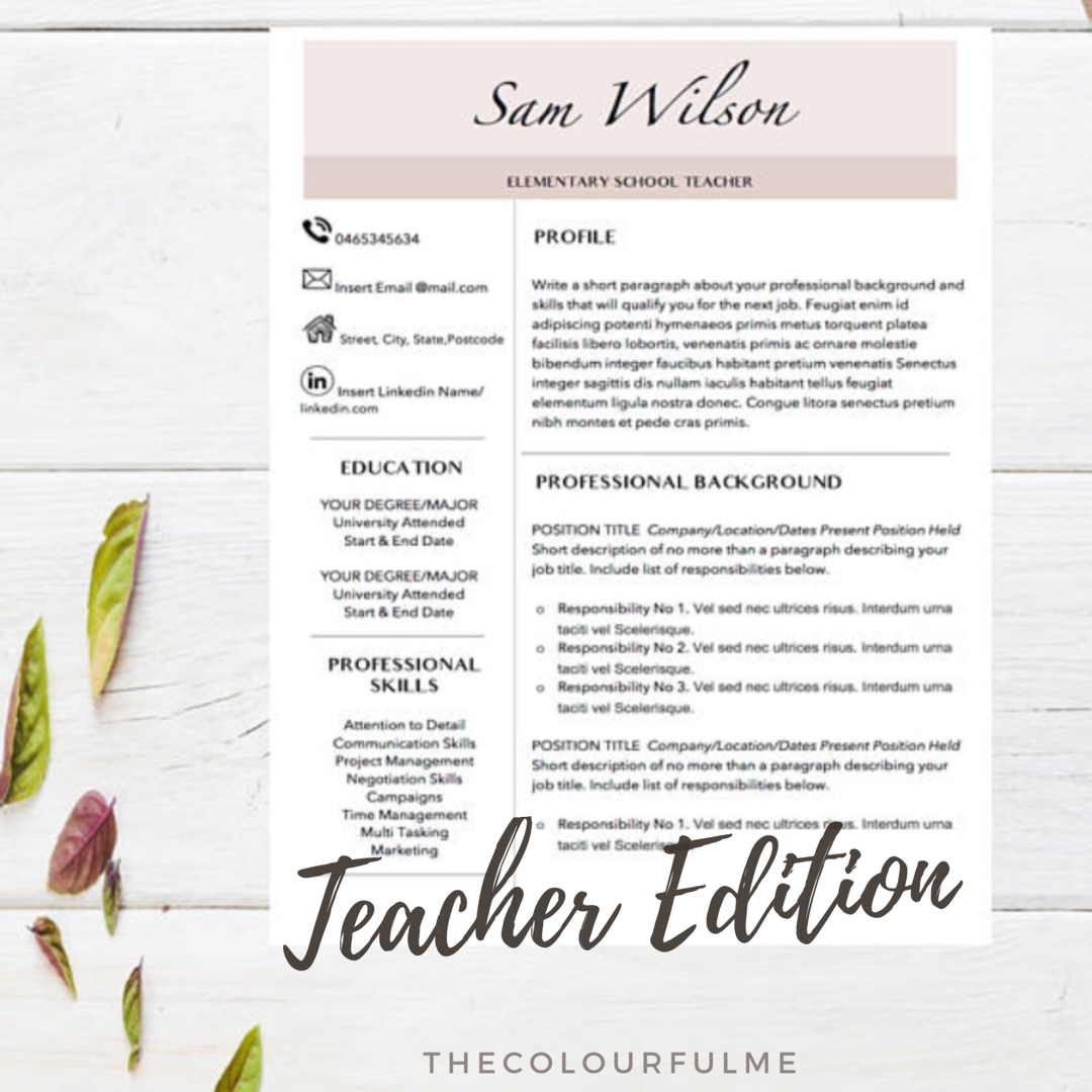 Resume Templates Professional Resume Templates  Teacher Resume