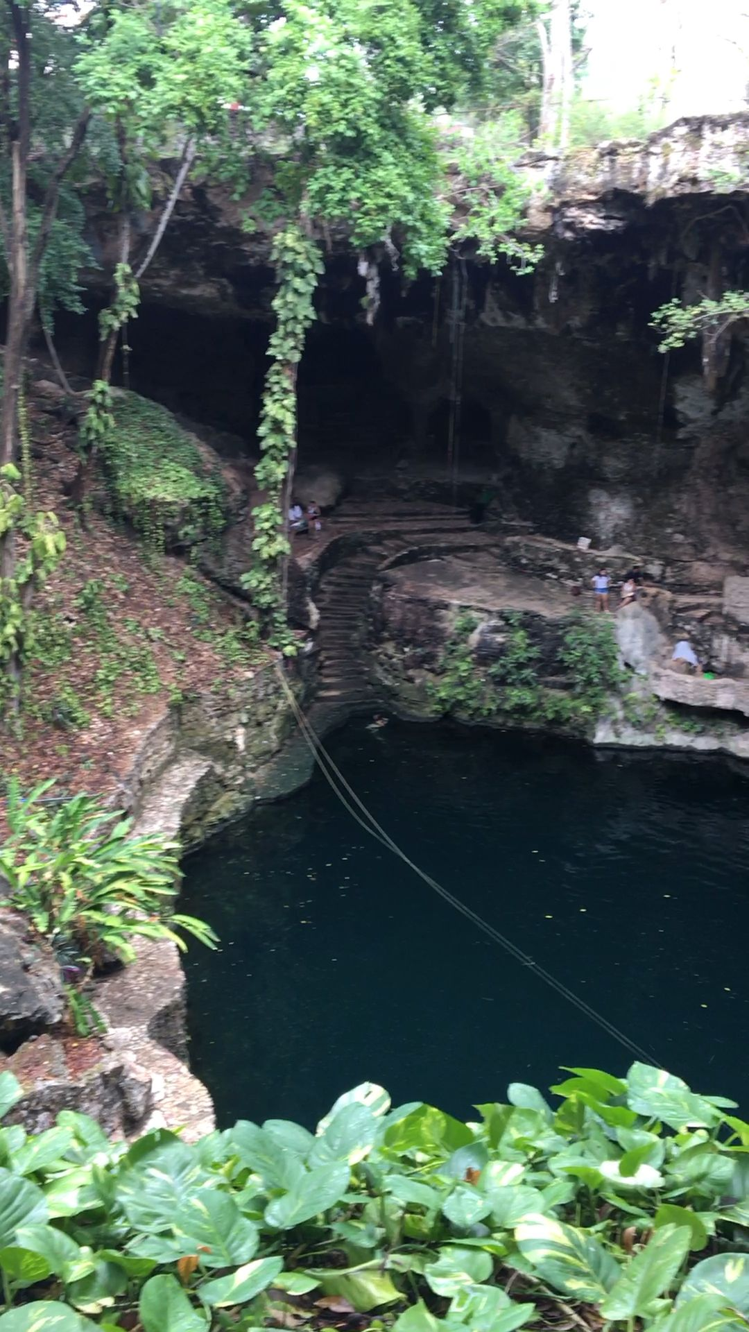 10 Best Cenotes To Visit In Yucatan Peninsula, Mexico