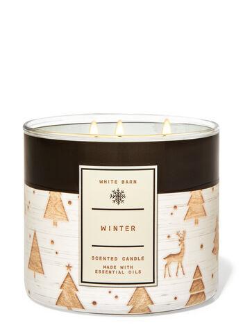 Bath & Body Works Winter 3-Wick Candle