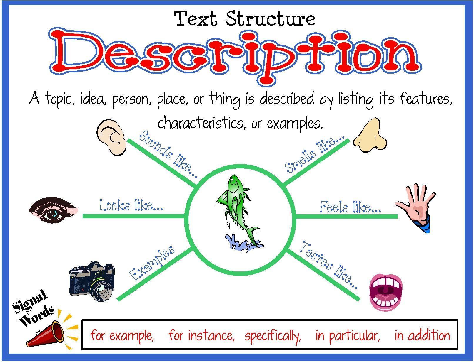 Text Structure Description Poster