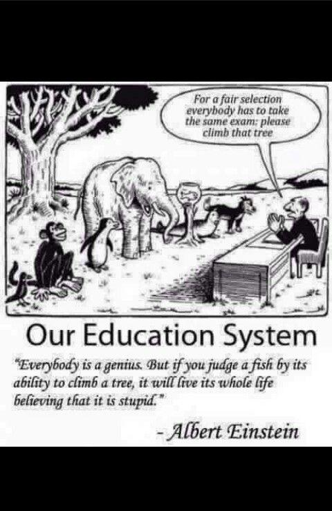 Pin By Me On Lol Education System Einstein Quotes Einstein
