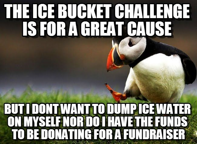 Pin by Pammy on my stuff | Unpopular opinion puffin ...