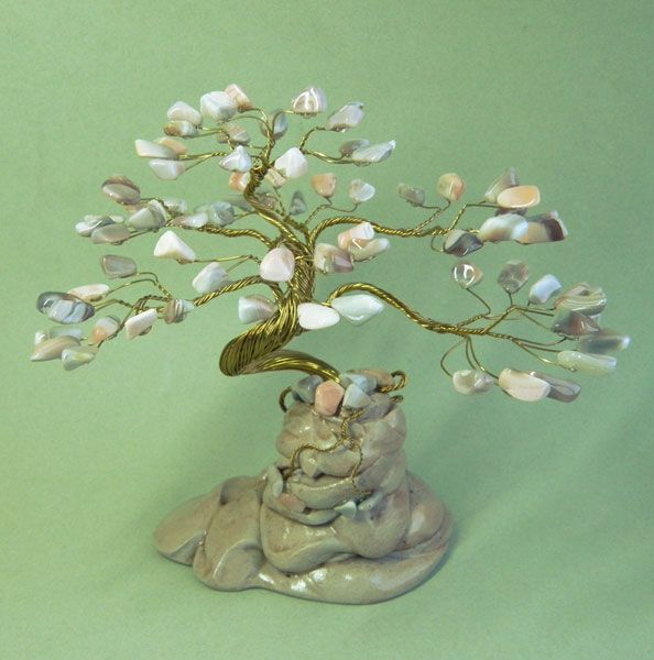 Дерево счастья - Бонсай Горный (S-75) с корнями | Каменное ...