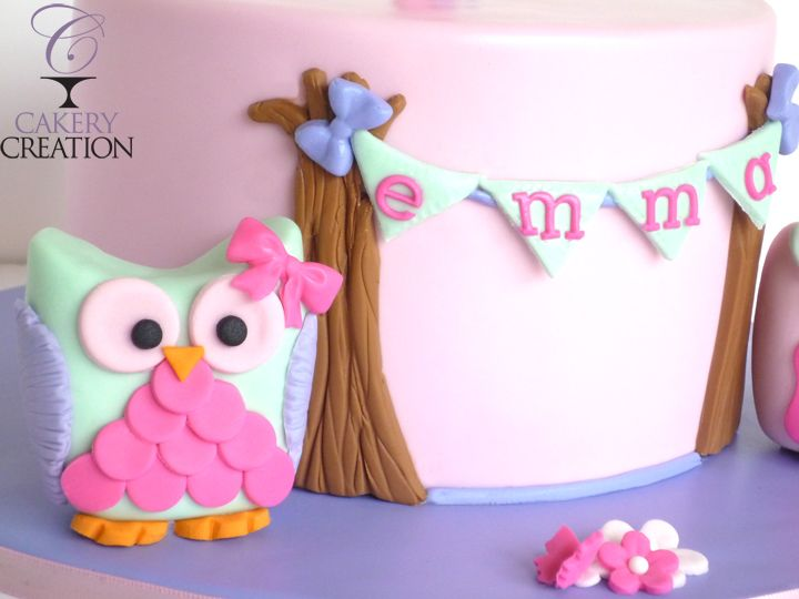 Owl cake 1st birthday by Cakery Creation in Daytona Beach Fl This