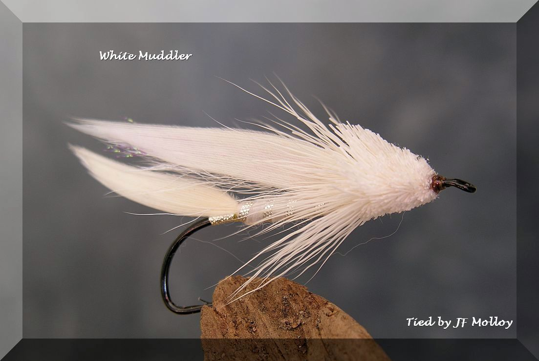 White Muddler | Salmon Flies | Fly tying patterns, Salmon ...