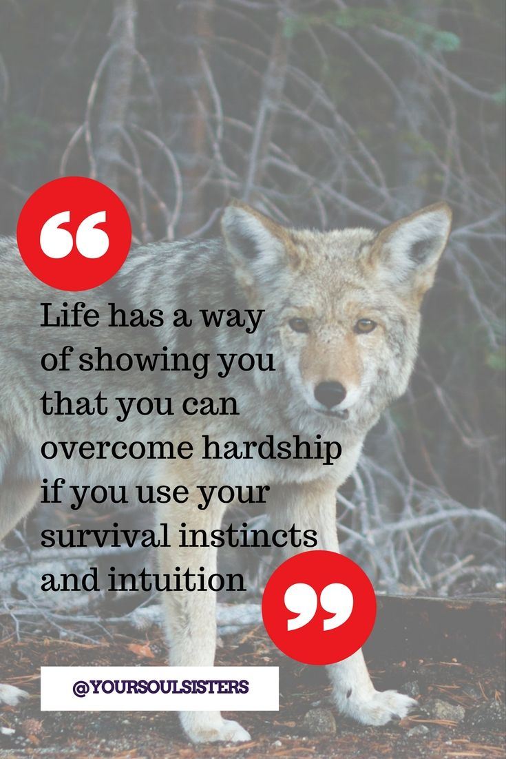 The #neardeath story of #AFE survivor Angela and how #intuition can prepare you for the worst. #YourSoulSisters
