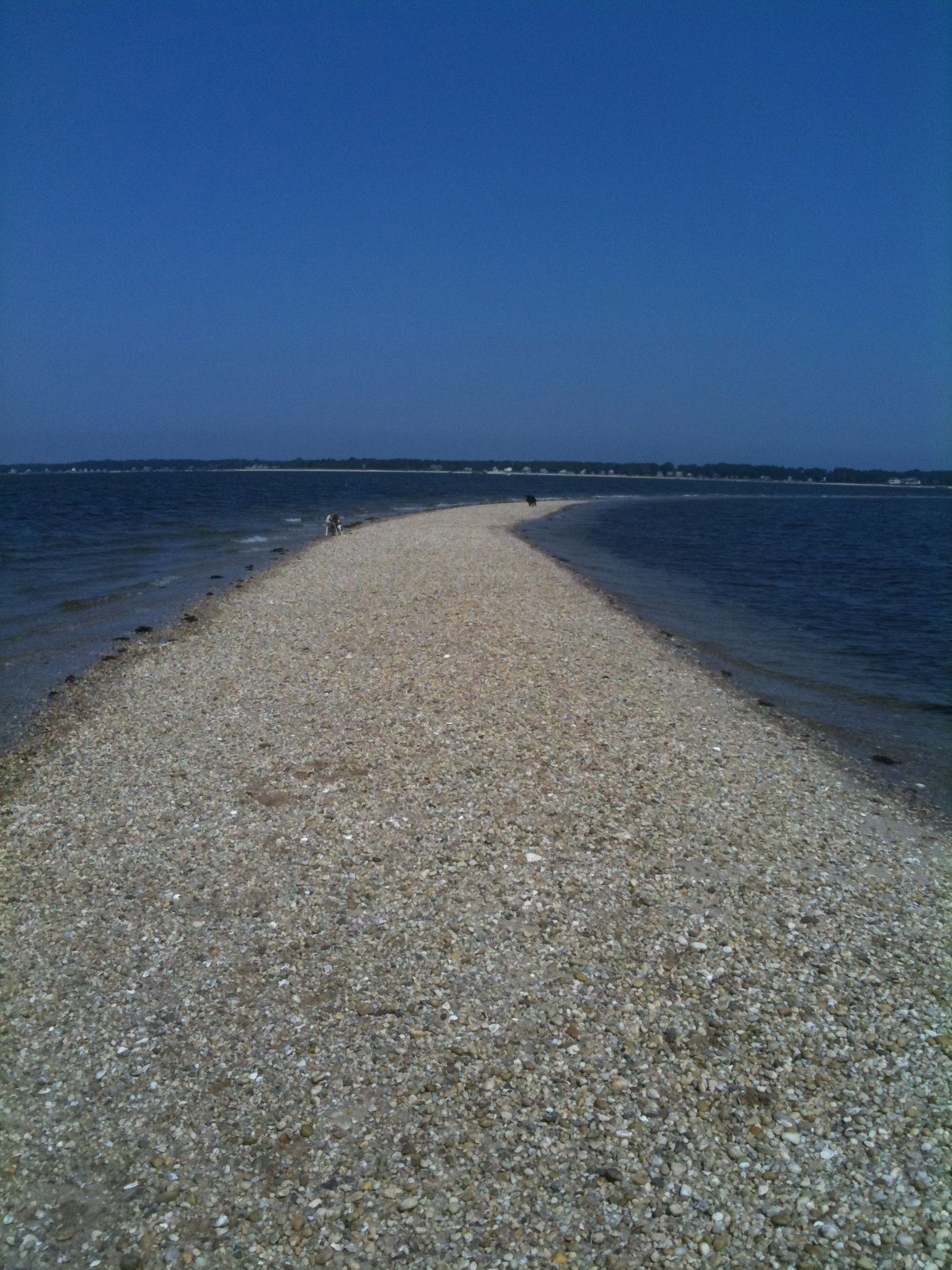 Cedar Point Little Peconic Bay Long Island Ny