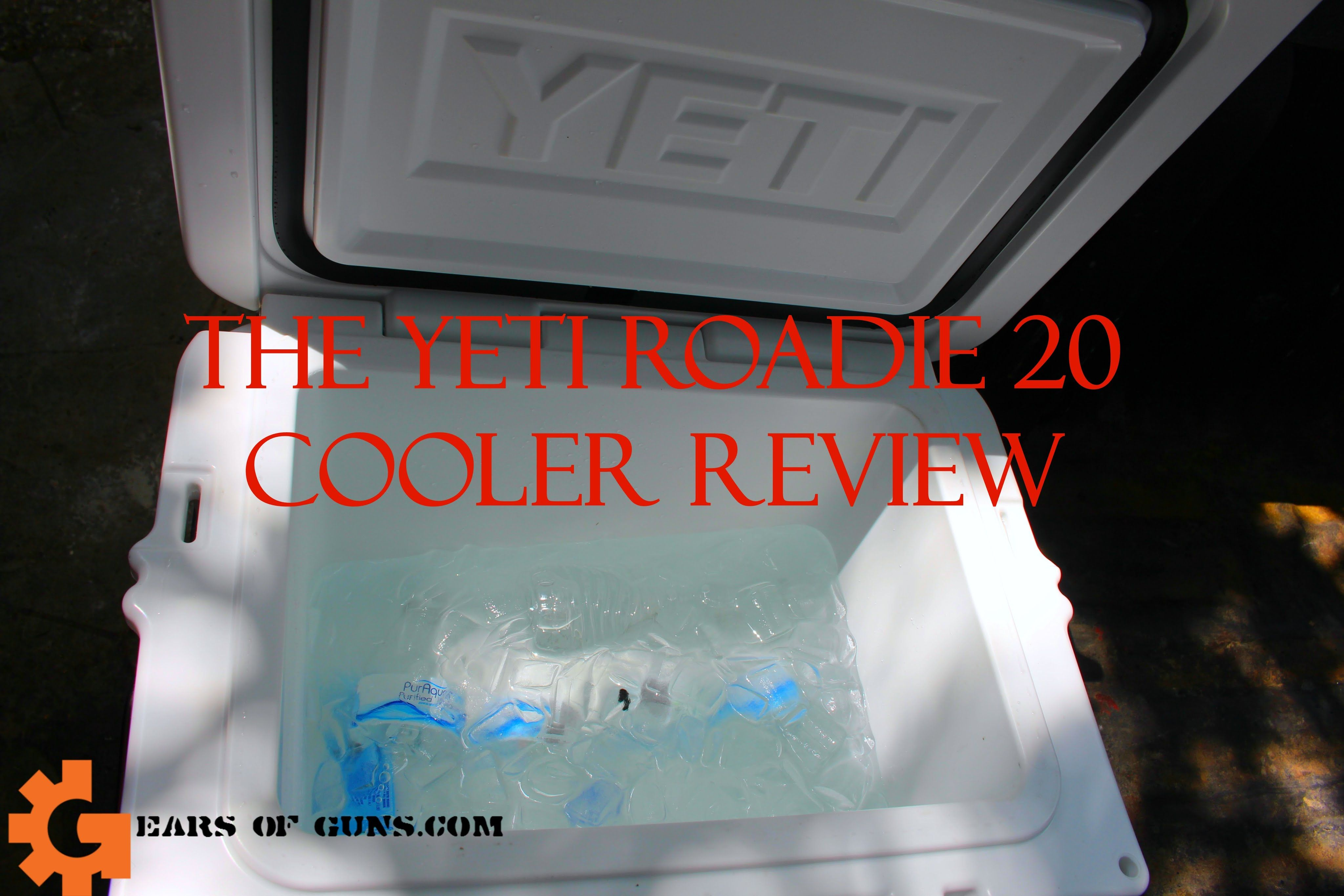 The Coolest Yeti Roadie 20 Review Gears Of Guns Cooler Reviews Yeti Roadie Roadies