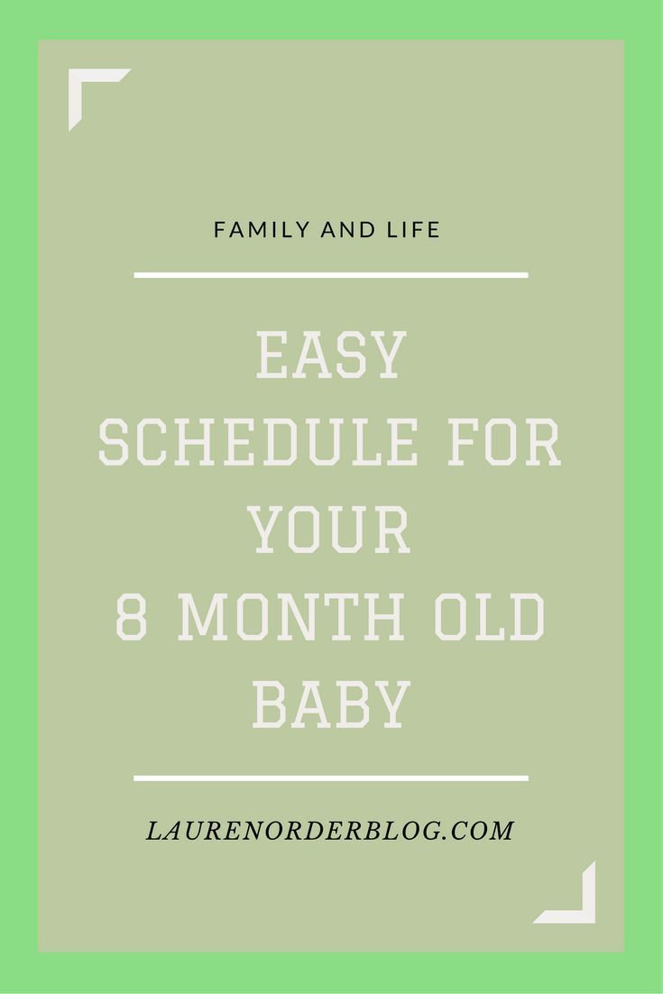 schedule your baby: 8 months old | female bloggers free for all