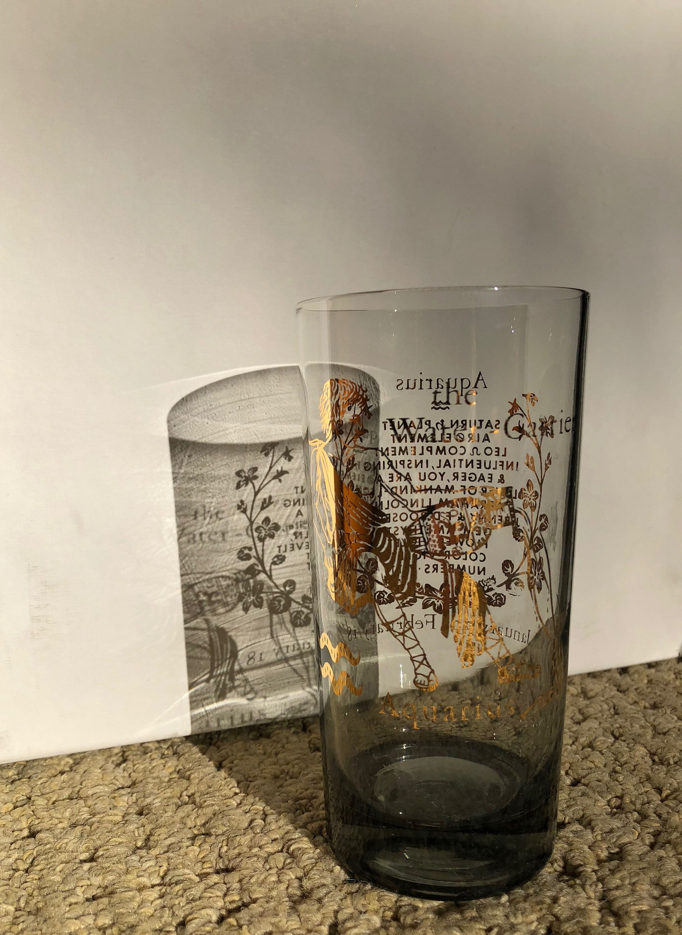 Vintage Astrology Zodiac Drinking Glass Aquarius Drinking Glass Glass Water Carrier
