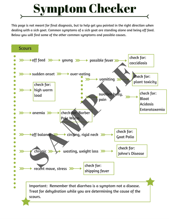 All fruit and vegetable diet plan weight loss picture 8
