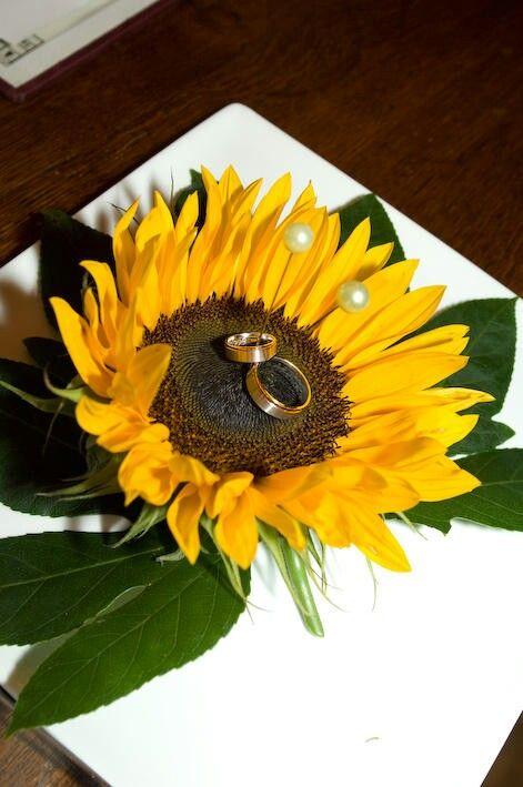 super s es sonnenblumen ringkissen edina hochzeit. Black Bedroom Furniture Sets. Home Design Ideas