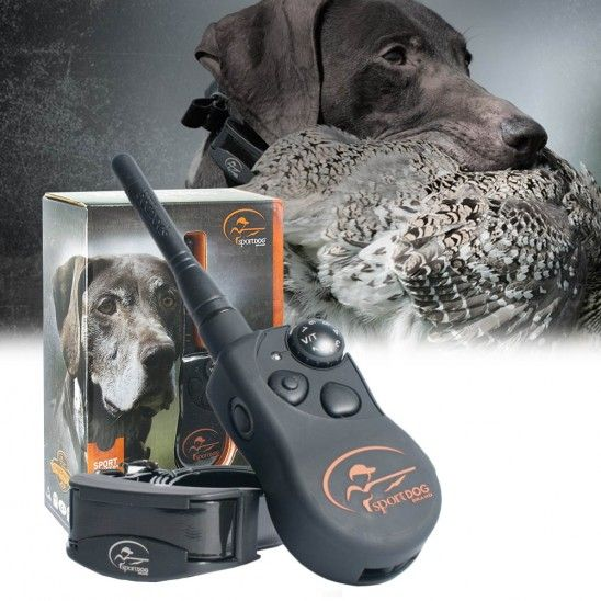 Sportdog Sporthunter 825 Dog Training Collar 149 99 Sporting
