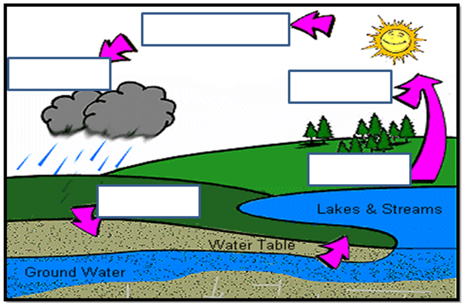 Worksheets Label  The Diagram  Of Water  Cycle 17 best images about water cycle on pinterest craft snowflakes and activities