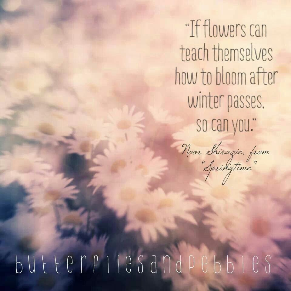 if flowers can teach themselves how to bloom after winter passes
