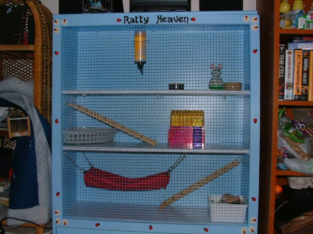 How to build your own Ratty Heaven