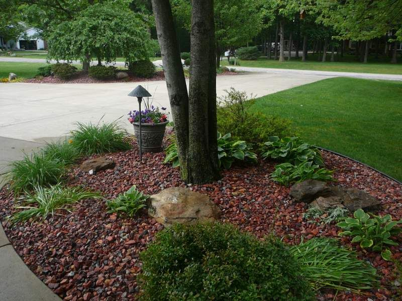 landscaping designs around a tree | ... | | Eric Jackson ...