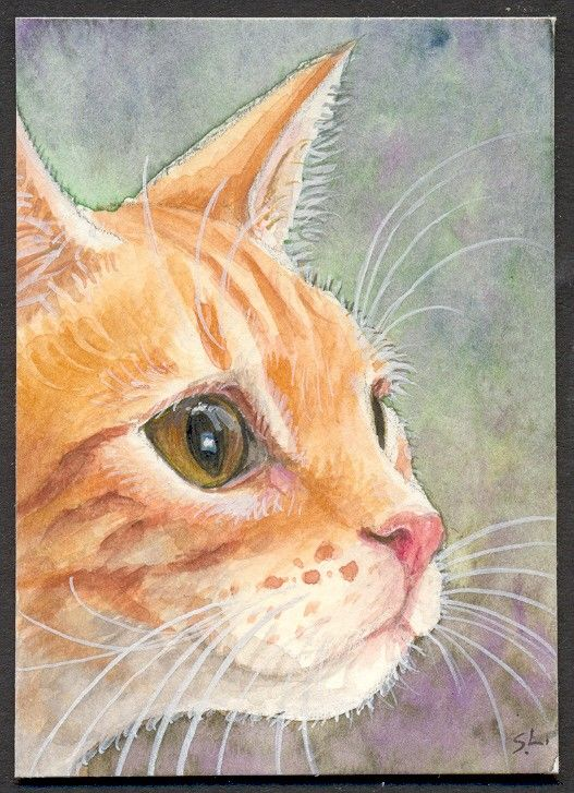 KITTEN CUTE BLUE EYES WITH BASKET HAT ART PRINT FROM ORIGINAL WATERCOLOR ACEO