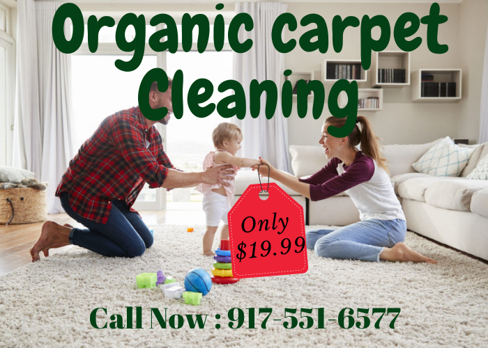 Organic Carpet Cleaning In 2020 How To Clean Carpet Organic Cleaning Products Organic Rug