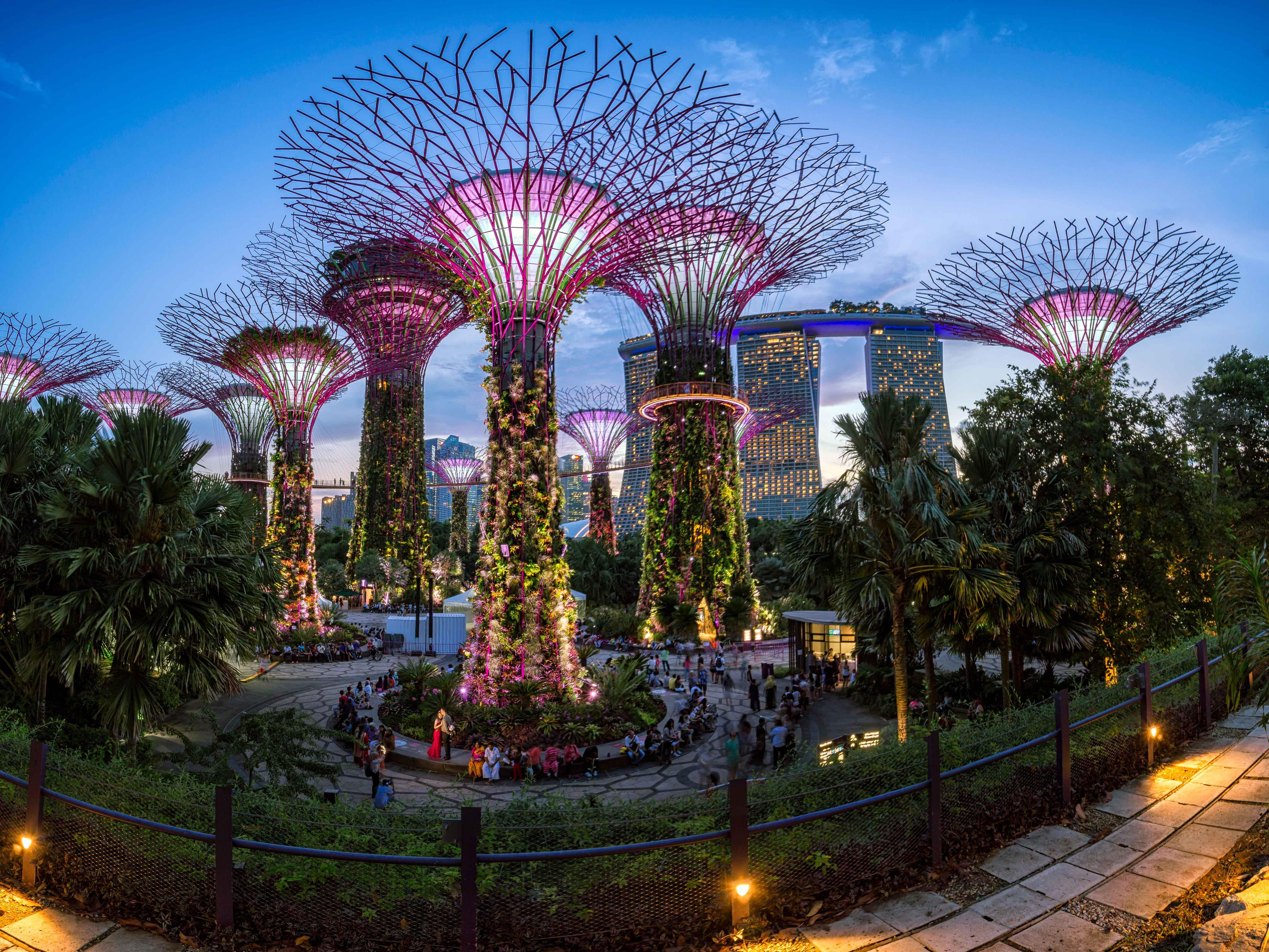 Panorama Of The Gardens By The Bay In Singapore Traveling Singapore Garden Gardens By The Bay Fun Website Design
