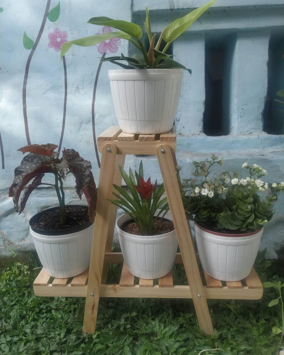 Rak Bunga 85rb Bahan Kayu Pinus Uk P55cm L16cm T50cm Homedecor Homedecorkediri Homedecorlover Rakbunga Rakbungakayu Pot Bunga Meja Pot Bunga Rak Pot Bunga