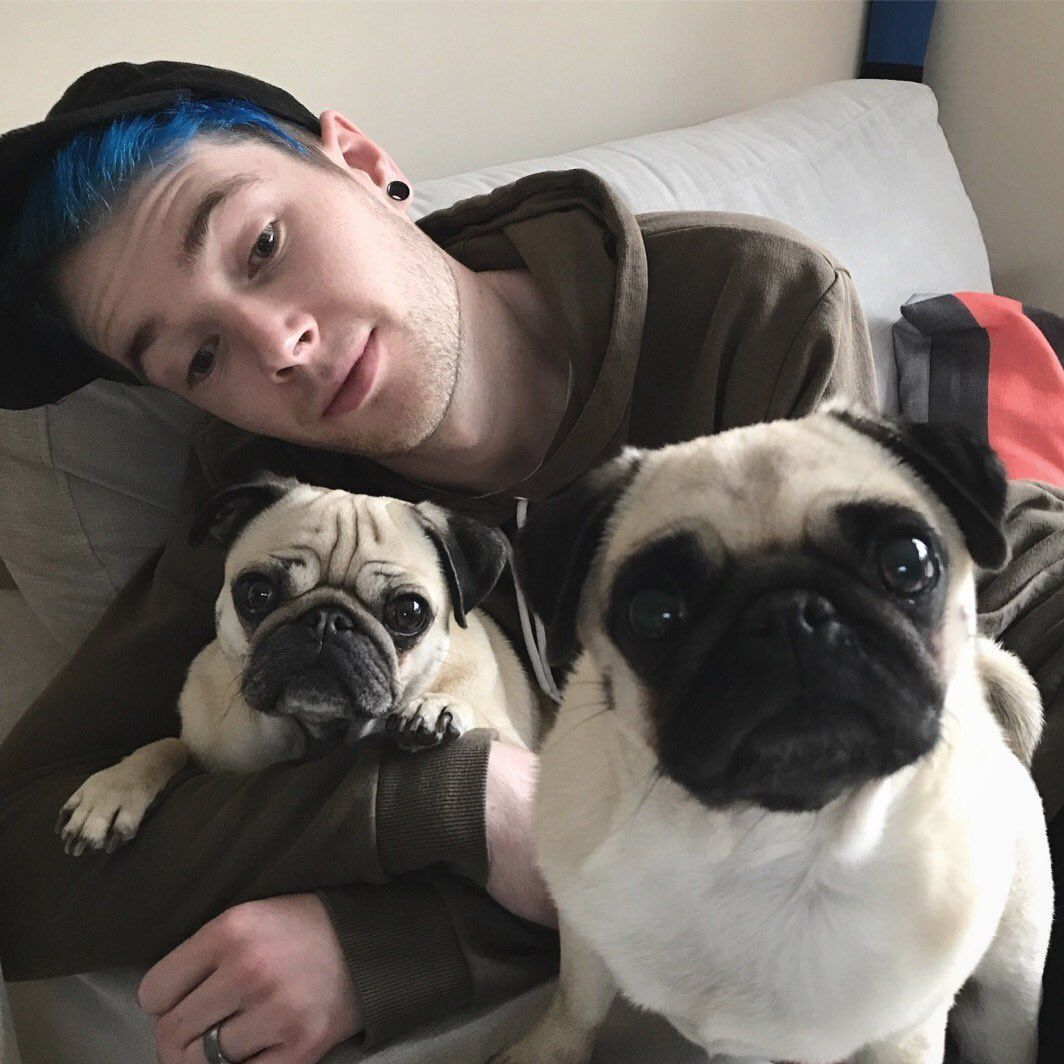 Dantdm Chillin With The Pugs Dantdm Youtubers Pugs