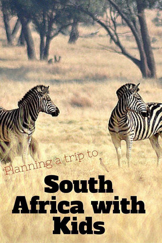 Planning a Trip to South Africa with Kids Africa travel