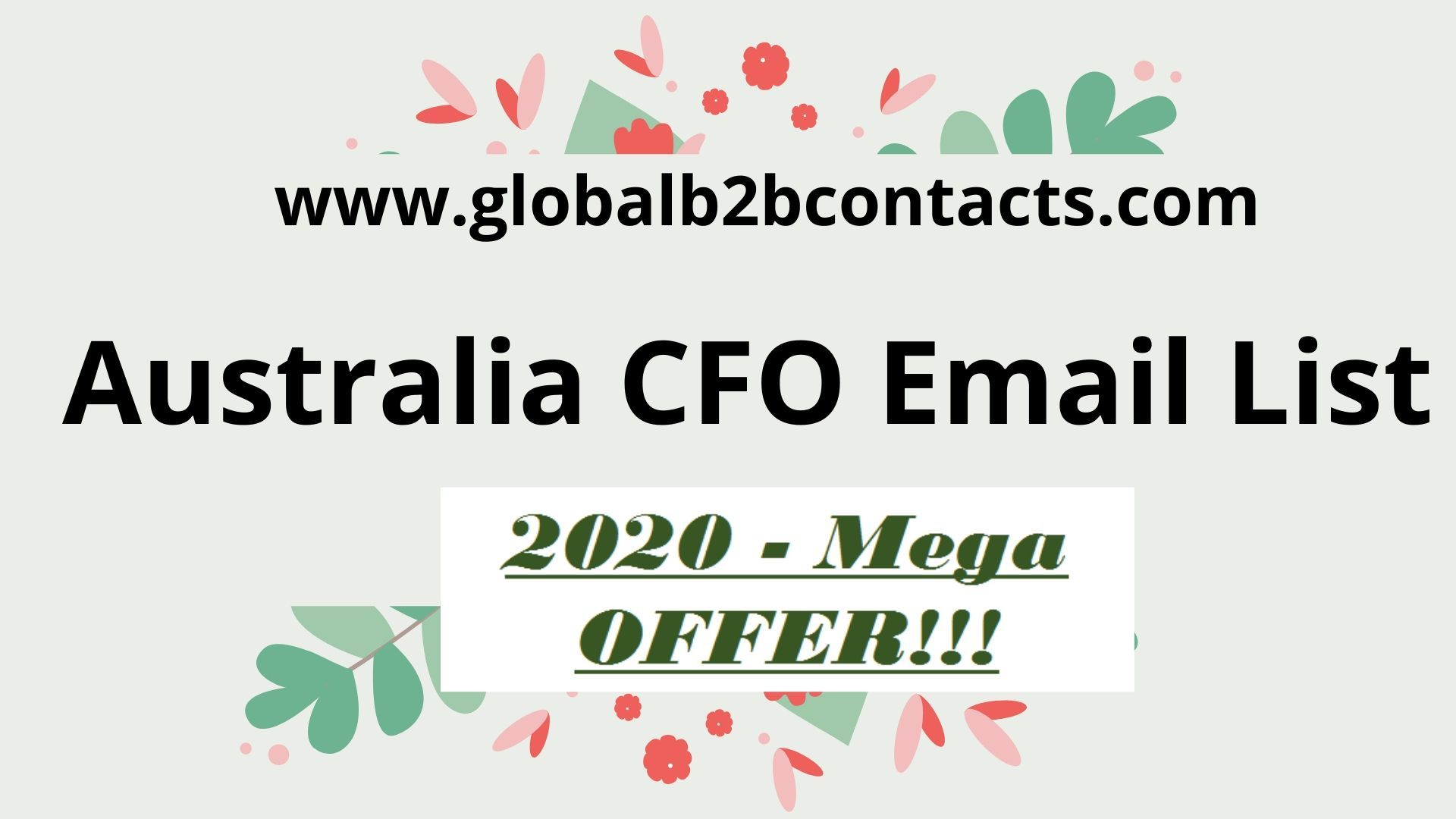 Australia CFO Email List in 2020 Chief executive officer