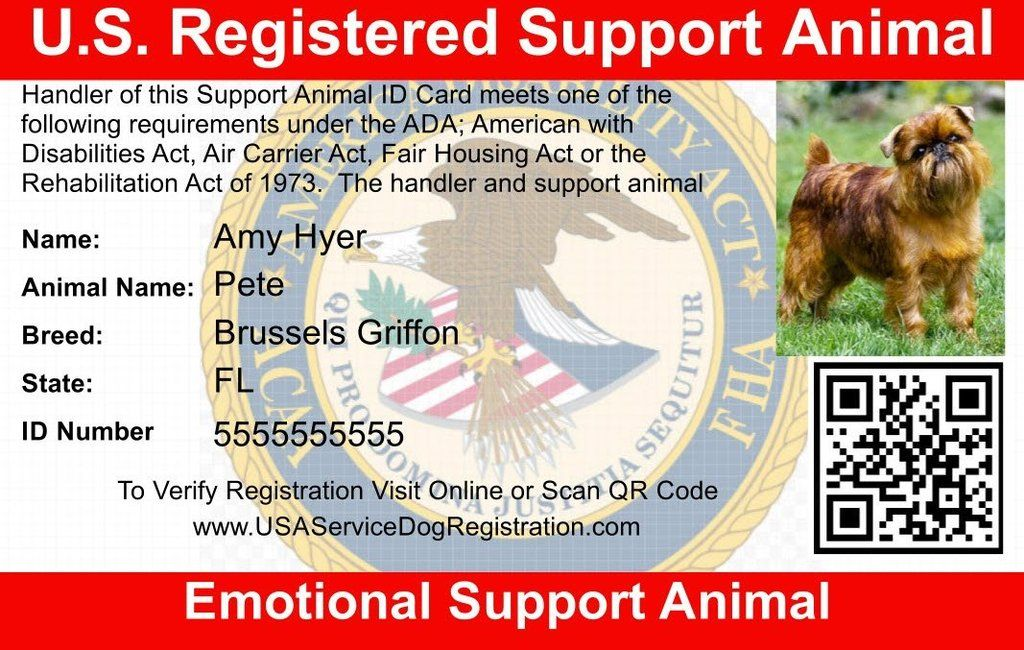 Emotional Support Animal Id Card Emotional Support Animal Emotional Support Dog Support Animal