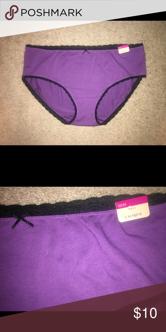 3068716d67e1 ⏬ ⏬ NWT LANE BRYANT CACIQUE purple hipster panties NWT