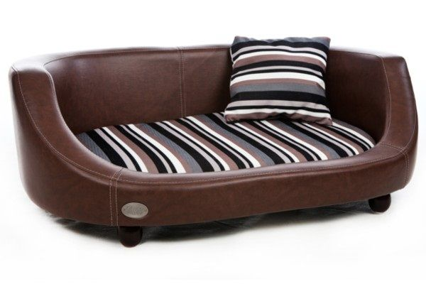 Best A Complete Guide To Luxury Dog Sofa – Please Make The 640 x 480