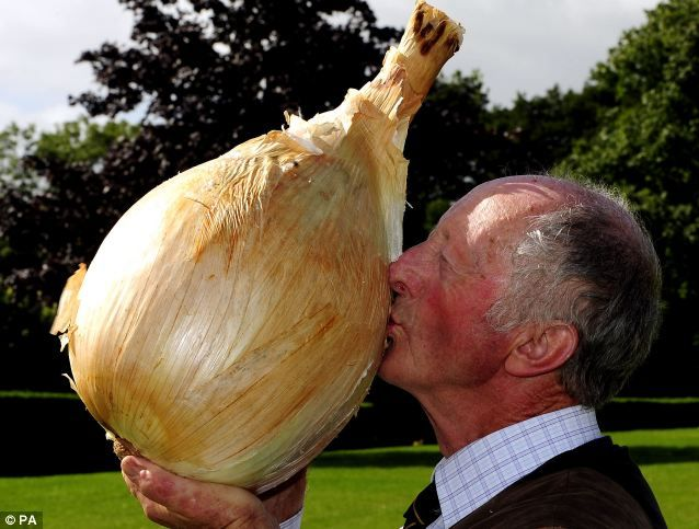 Peter Glazebrook has just smashed his own record for producing the world's largest onion. The prize vegetable weighed in at 18lb 1oz, breaking his previous best by almost 2oz!