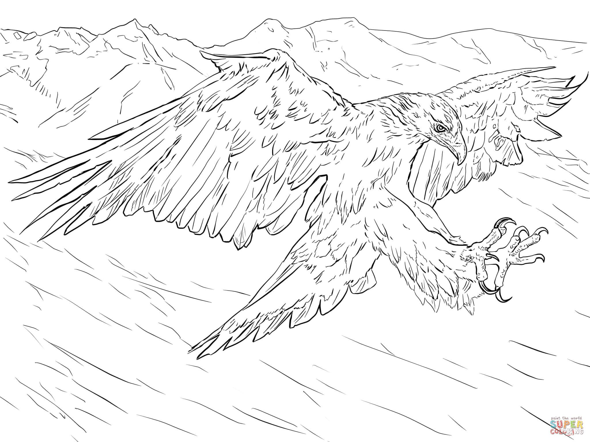 Golden Eagle Attacks Coloring Page Free Printable Coloring Pages