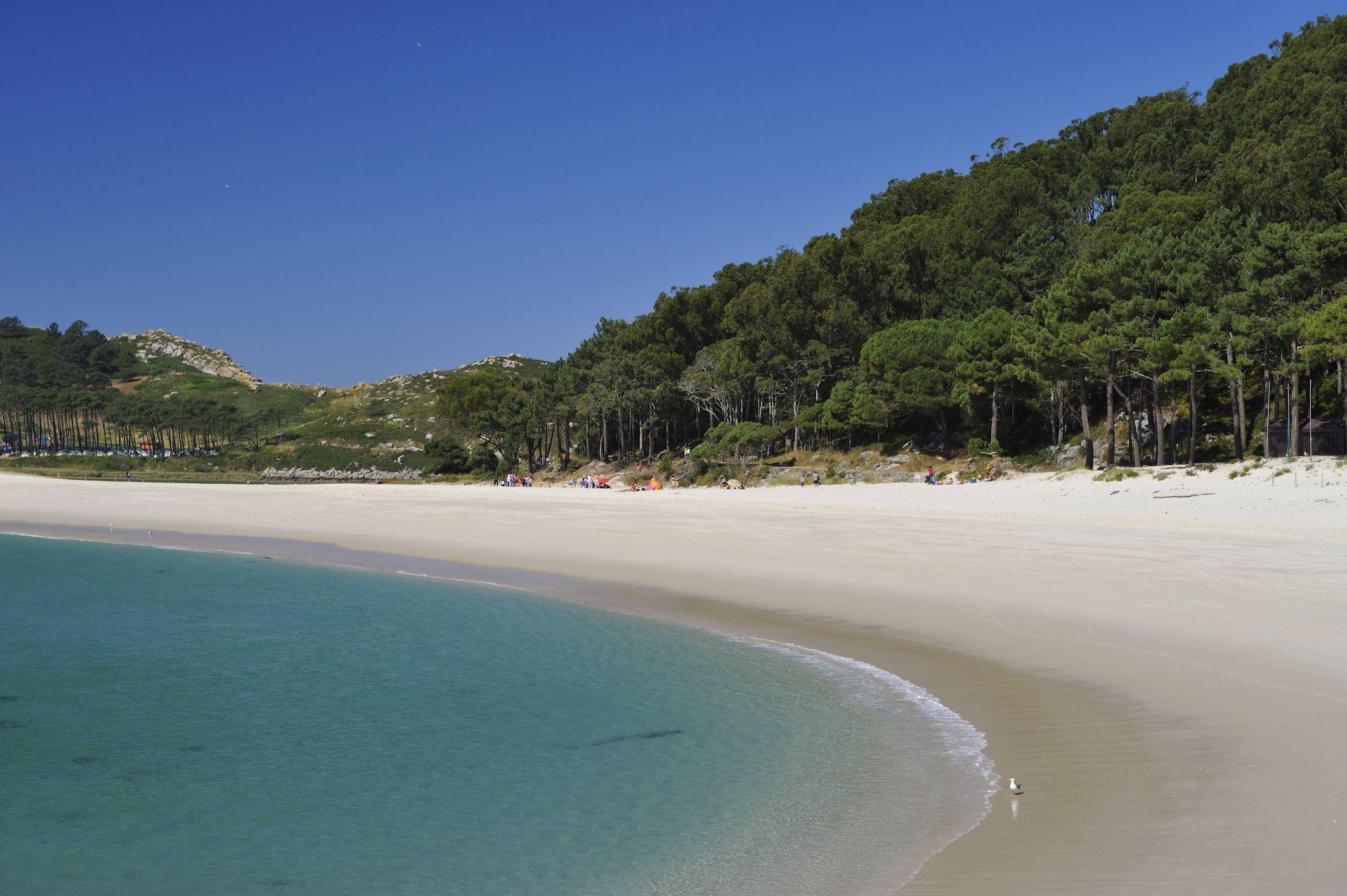 playa de rodas islas cies (pontevedra)
