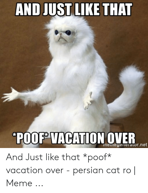 Meme Vacation Over | Vacation meme, Vacation humor, Memes