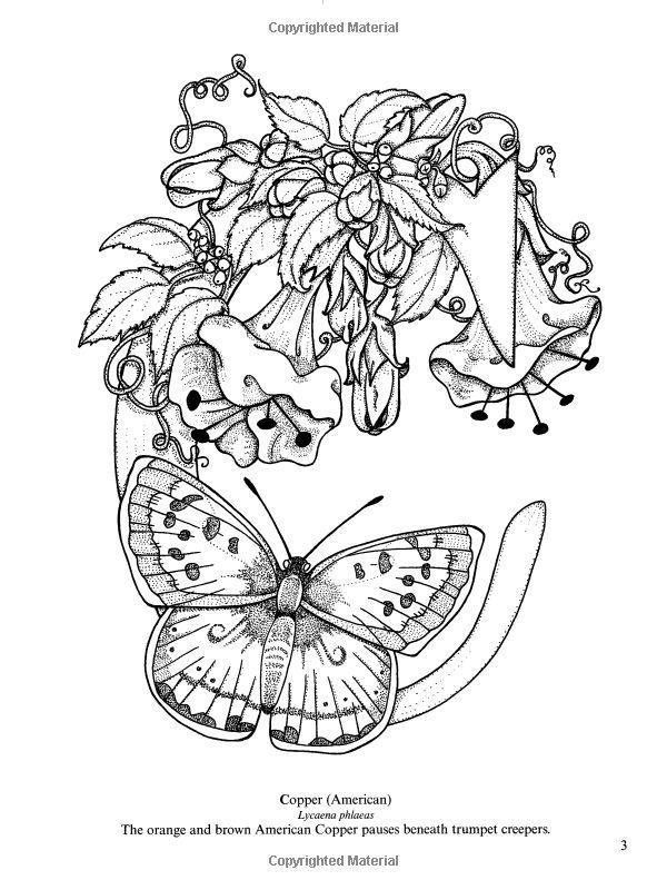 Butterfly Alphabet Coloring