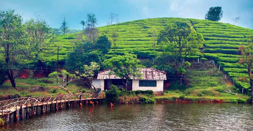 Vagamon – the jewel in the crown of Idukki | Tourist places, Kerala travel, One day trip