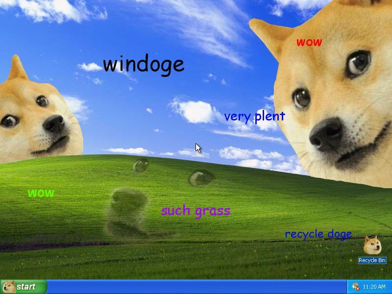 Such Desktop Doge Animal Memes Doge Meme