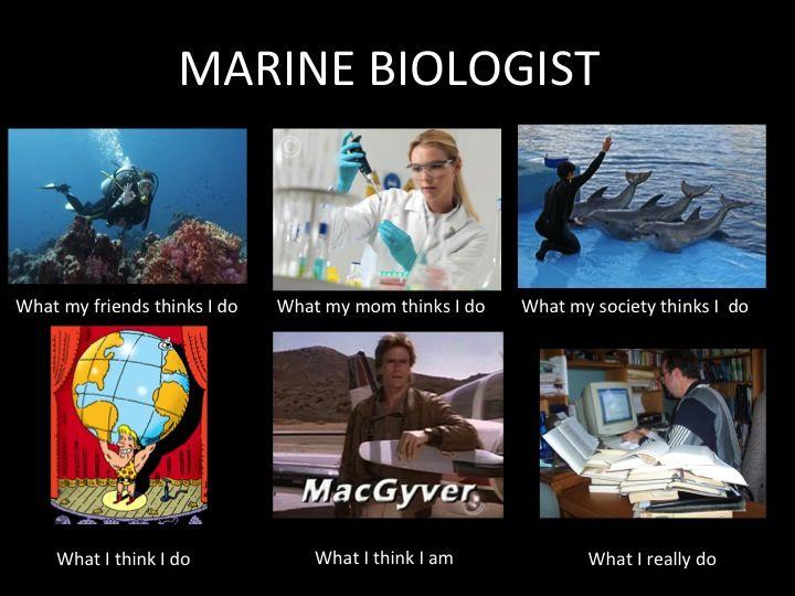 Zoologist, Marine Biologist, or Ecologist???