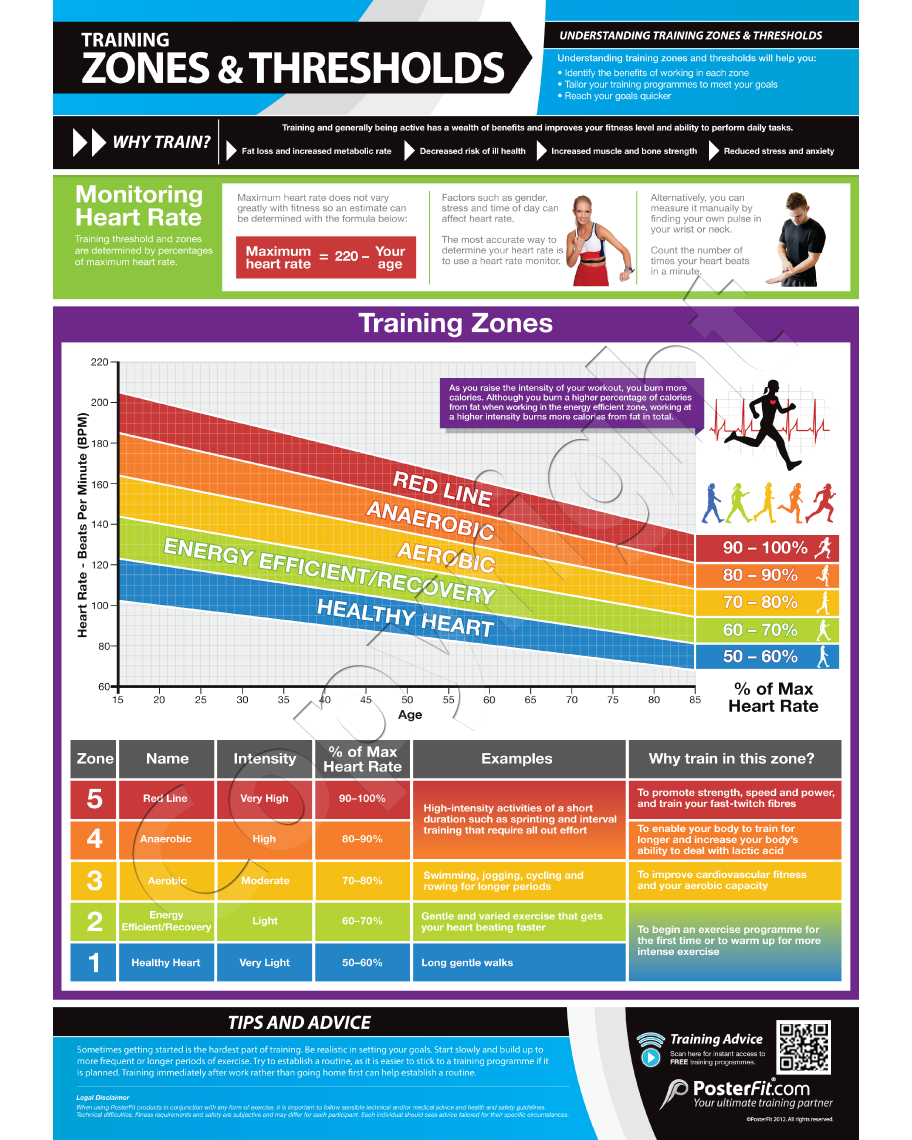 Training zones and thresholds poster highlights the benefits of training zones and cardio thresholds fitness training wall chart poster wqr code geenschuldenfo Image collections