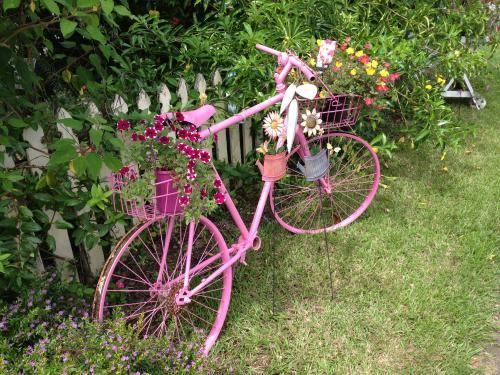 Pink bike in cottage garden, Queensland. | Cottage garden ...