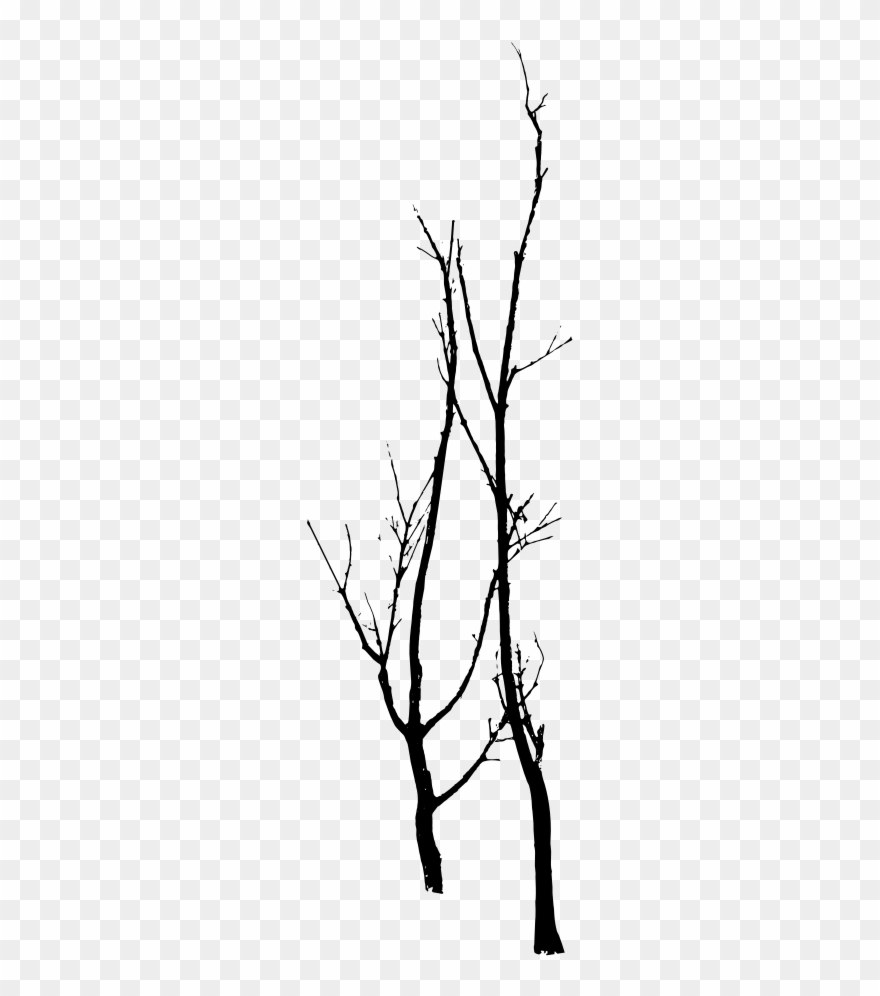 Clip Art Free Stock Architecture Vector Tree Outline Dead Tree Vector Png Transparent Png Tree Outline Free Clip Art Vector Trees