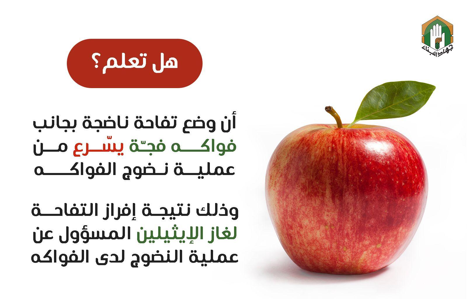التفاح يساهم في نضوج الفواكه الفجة Fruit Apple Recipes