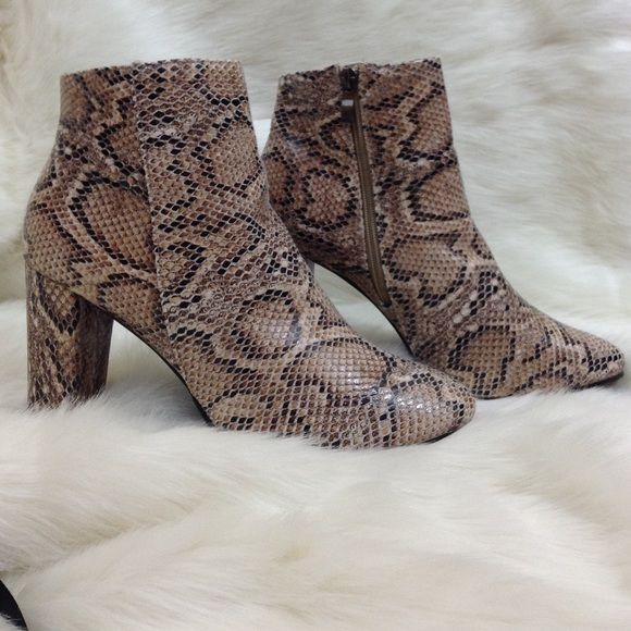 Snake Print Booties NWOT NO TRADE ❗️OFFERS ARE WELCOMED❗️ HAPPY POSHING  Daisy Street Shoes Ankle Boots & Booties