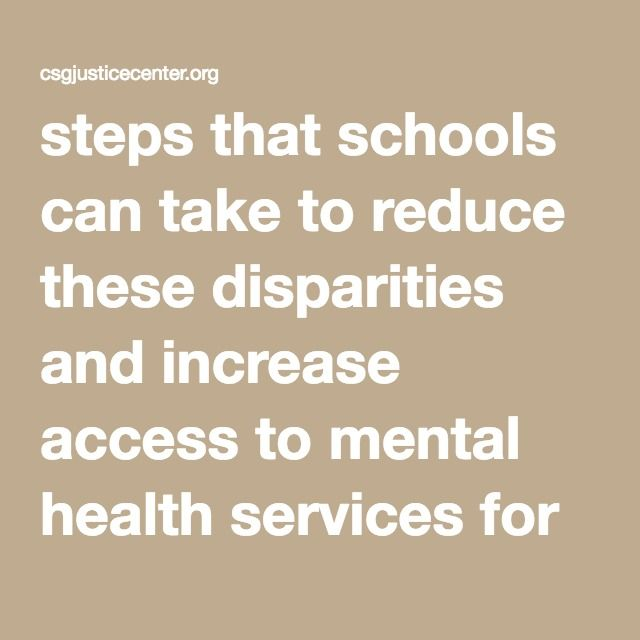 steps that schools can take to reduce these disparities and increase