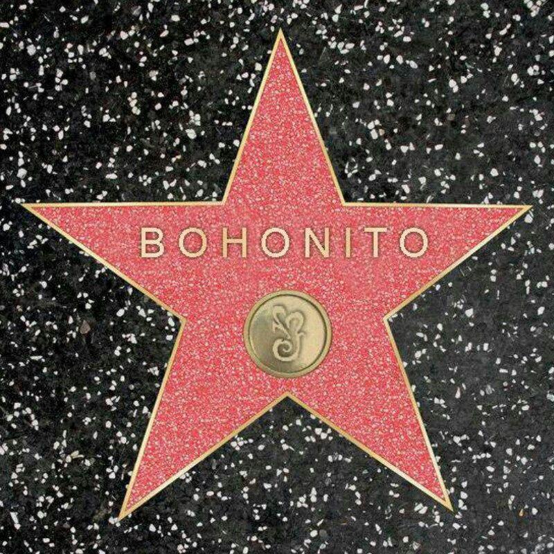 Bohonito is conquering Hollywood! ;) #losangeles #walkoffame #hollywood #star #LA #bohonito #etsy